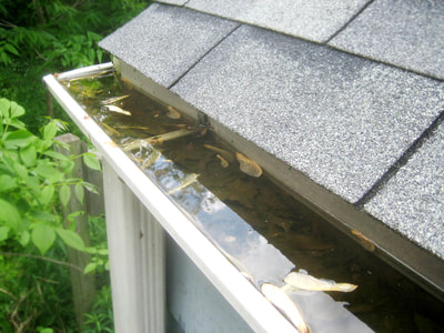 remove leaves clogged in gutters